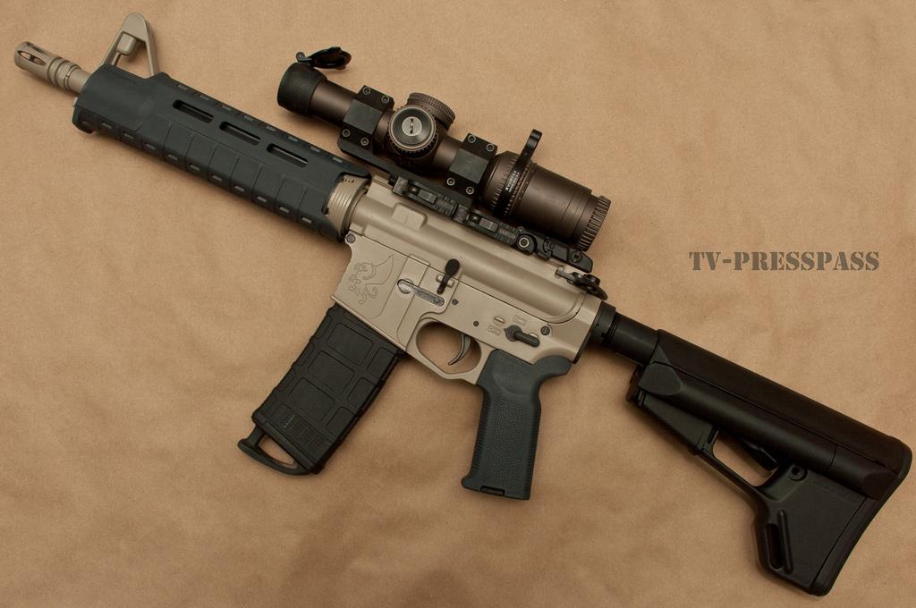 Norinco NEA Budget AR-15